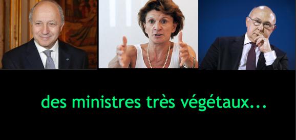 Ministres végétaux