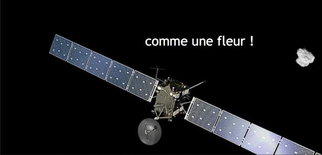 Rosetta titre